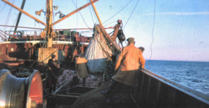 How Michael Gove's Proposal Could Give Us Less Control Over Fisheries