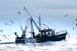 The Grim Prognosis For British Fishing Post-Brexit