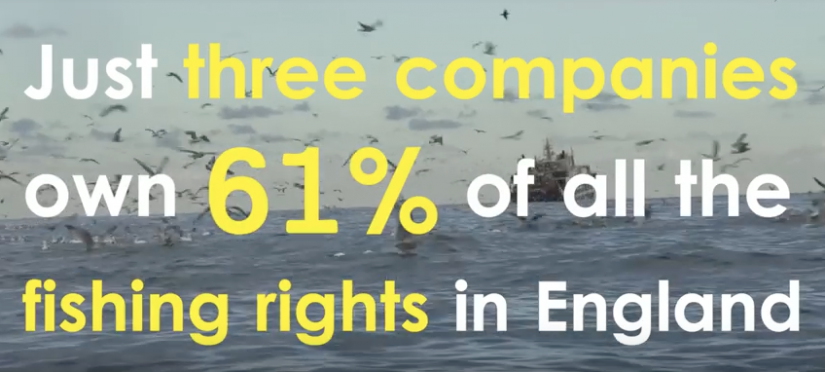 The TRUTH about the multi-million pound fishing firms monopolising UK seas