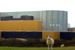 What's happening with the UK's new nuclear power stations?