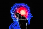 Mobile Phone Radiation Leads to Cancer, Says U.S. NTP in Final Report