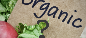 Only in America: Should GMOs be allowed in organic food?