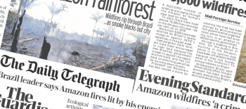 UK prurchased £1bn of beef from firms tied to Amazon deforestation