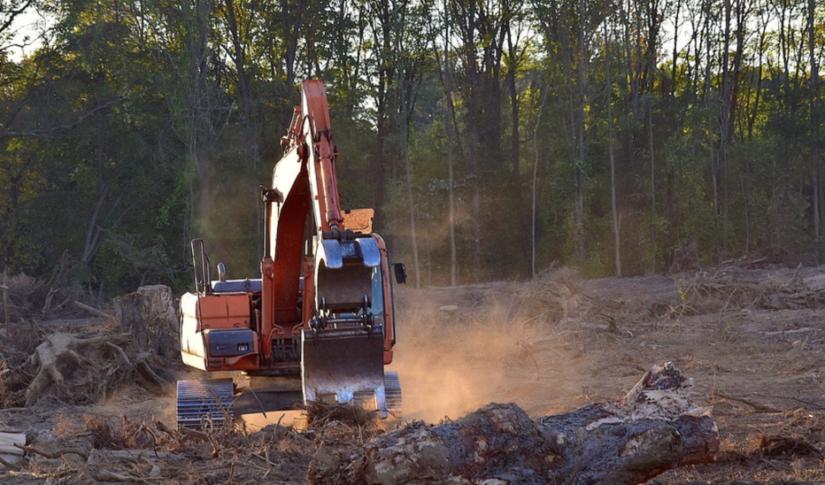 HS2 - Europe's biggest deforestation project hides behind pandemic